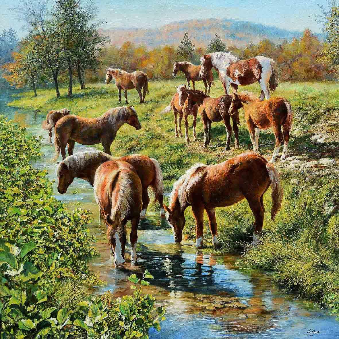 10-cavalli-a-hudicevec-50x50_6606