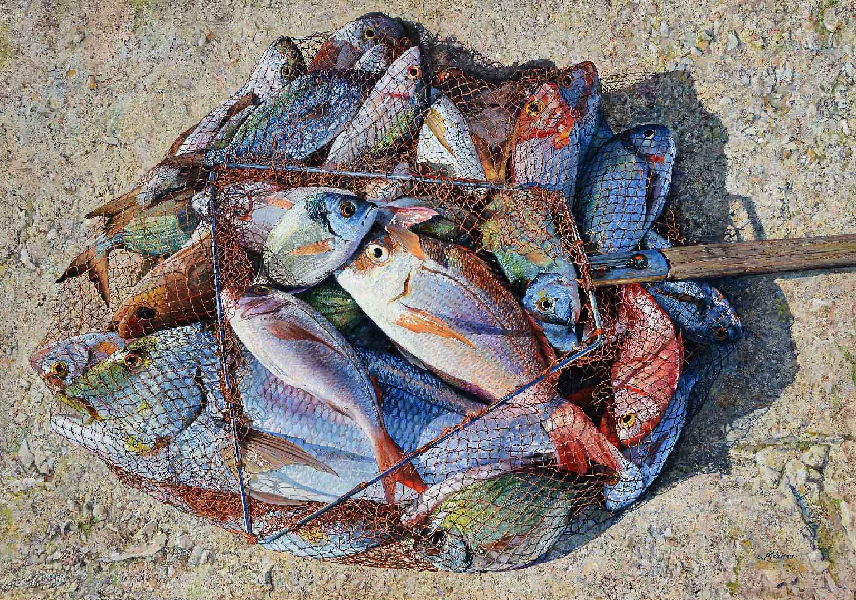 2-pesca-abbondante-53x75_6585