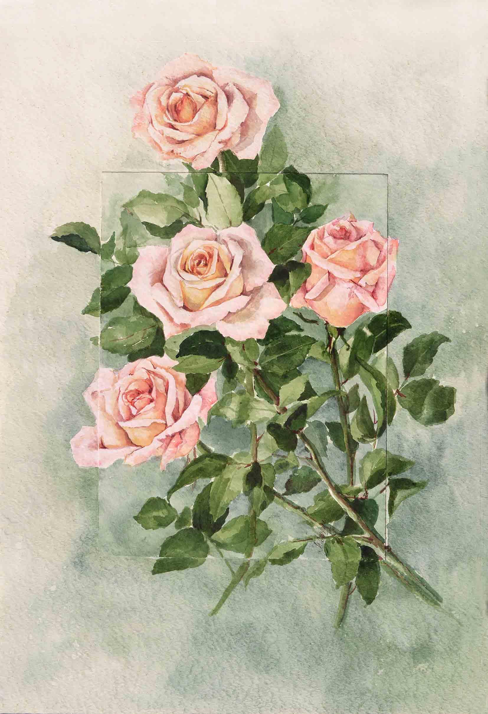 Quattro rose - acquerello cm 70x50