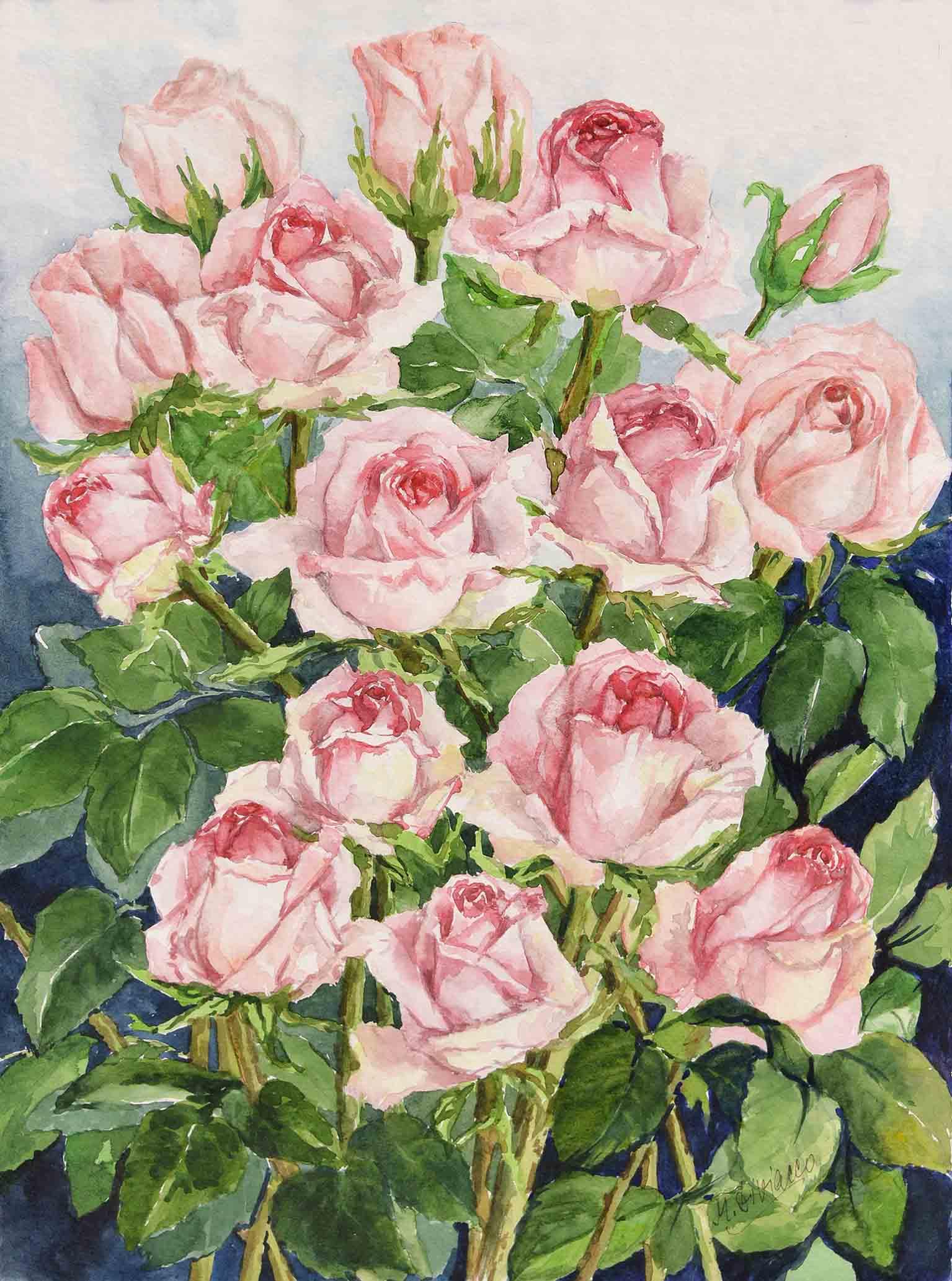 Rose rosa - acquerello cm 48x36