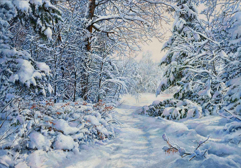 Bosco dopo la nevicata - 50x70 cm
