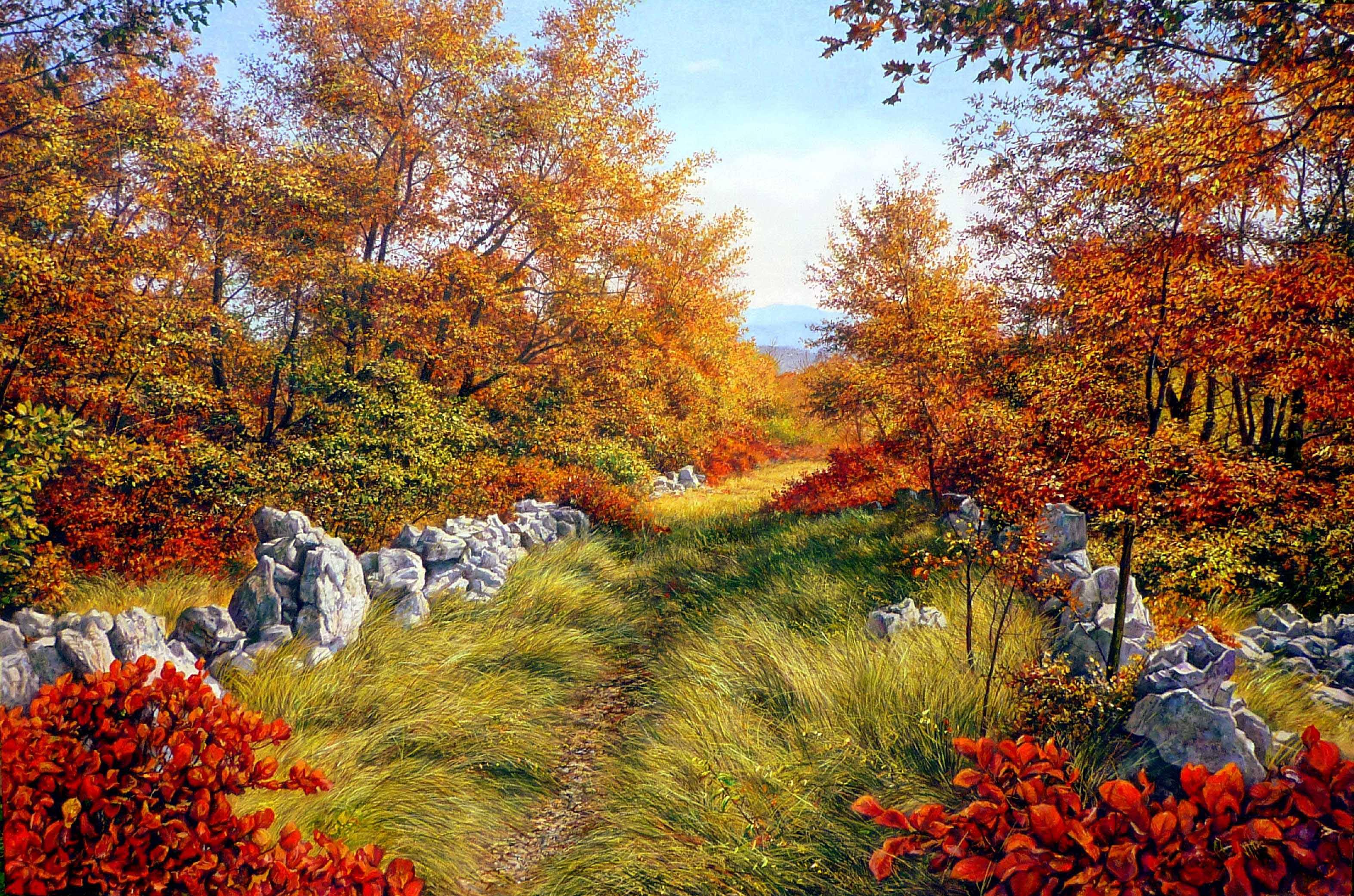 Livio Mozina - Sentiero in autunno