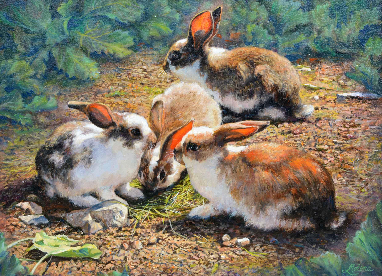 Možina -  Coniglietti sull'aia
