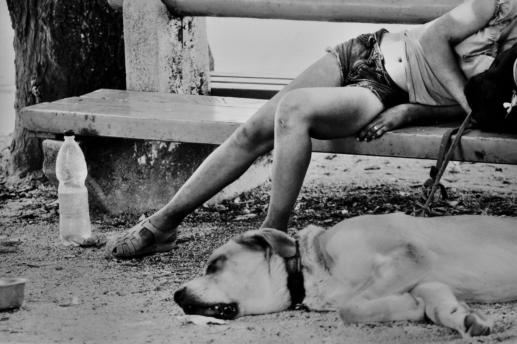 Stanchezza (ragazza con cane)